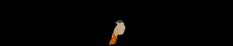 Auspicia AB logo